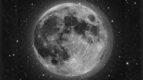 Cat Power - The Moon