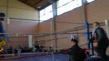 Muay Thai Ege Şampiyonası