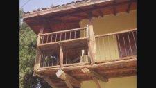 Höyük Köyü