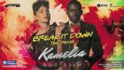 Kamelia feat. Doc Slim - Break It Down (Remix)