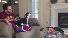 Sevimli Köpekten Dizi Şarkısı!