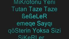 Efecan Diss 33 Mersin Plaka Yerli 2013