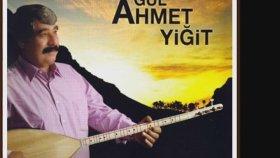 Gül Ahmet Yiğit  - Anamın Acer Gelini - Hüseyin Ferdi Tayfur Koca
