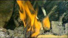Adnan Yılmaz - Haydi Yarim Ormana