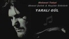 Ahmet Şafak & Naşide Göktürk - Mehmet Tokat - Yaralı Gül