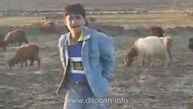 Kürtçe Video