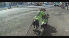 Motosiklet Süren Maymun