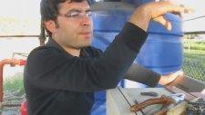 Türkiyede İLk Tüplü Aşılı Sertifikalı Badem Fidanı Sulama Sistemi