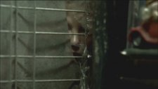 Six Bullets (2012) - Official Trailer #1 [HD] - Jean-Claude Van Damme