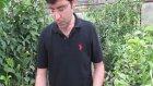 Aşılı Tüplü Sertifikalı Badem Fidanı Nedir?