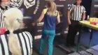 Bilek Güreşinde Boyut Değiştiren Kadın Sporcu!
