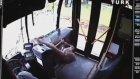 Otobüs camından geyik girdi