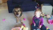 Sevimli Bebeğin Köpekle Arkadaşlığı