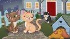 Aşık Kediler