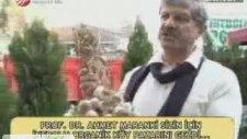Ahmet Maranki Sarımsağın Faydaları