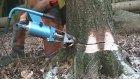 Hidrolik kriko ile ağaç kesimi