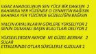 Müzik Dersi : Ilgaz Anadolunun Sen Yüce Bir Dağısın - Blok Flüt Notaları