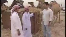 Ayna Programı - Dubai 4