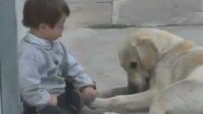Köpek Down Sendromu Çocuğu Eğlendirmeye Çalışıyor