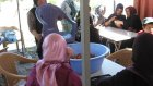 Tümtürkler Piknik