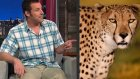 Adam Sandler'e Çita Saldırdı!
