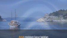 Murat Süngü - Aman Melekem Kavur Balıkları