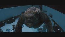 Percy Jackson: Canavarlar Denizi  - Türkçe Dublajlı Fragman