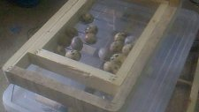 Kuluçka Makinesi Otomatik Yumurta Çevirme Sistemi