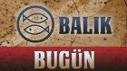 BALIK Burç Yorumu 25 Temmuz - Astrolog Demet Baltacı
