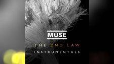 Muse - Liquid State (Instrumental)