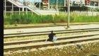 Hızlı trenle ölümcül oyun