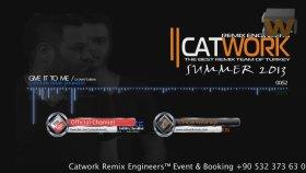 Dj Sava Ft.misha - Give It To Me (Catwork Remix)