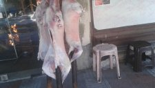 Kuzu Çevirme