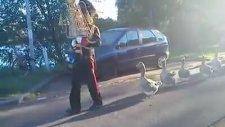Kazlar bando takımına katılırsa!