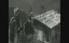 Kazım Koyuncu