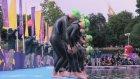 İşte Tokyo'nun 2020 Olimpiyat Tanıtım Filmi