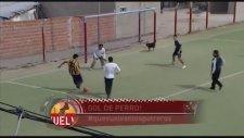 Amatör Maçta Kafayla Gol Atan Köpek