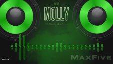 Tyga Ft. Wiz Khalifa & Mally Mall - Molly (Bassboost)