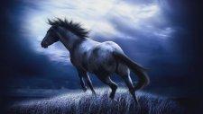 Bryan Adams - Here I Am (Lyrics) Spirit Stallion Of Cimarron