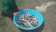 Serpme İle Balık Nasıl Avlanır