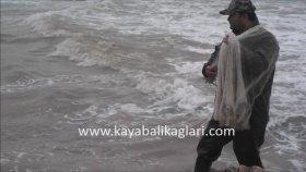 Serpme İle Balık Avı Videoları 9