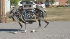 Amerikalıların son icadı: Dört nala koşan robot
