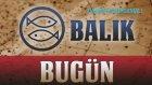 BALIK Burcu Astroloji Yorumu - 7 Kasım 2013
