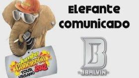 J Balvin - Confırma Gıra Jumbo Concıerto