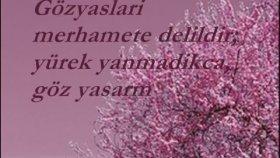 Mehmet Emin Ay - Beyaz Dilekçe
