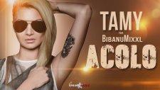 Tamy - Acolo (feat. Bibanu MixXL)