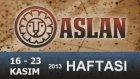 ASLAN Burcu Bu HAFTA-16-23 Kasım 2013- Astrolog DEMET BALTACI  - Bilinç Okulu, astroloji, burçlar