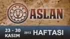 ASLAN Burcu HAFTALIK Yorumu (23-30 Kasım 2013) Astrolog DEMET BALTACI  - Astroloji, burçlar, burç