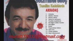Süleyman Oruç - Dertsiz İnsan Göster Bana