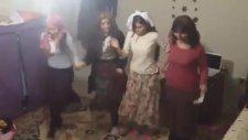 Entarisi Dım Dım Yar - Penguen Dansı Versiyon